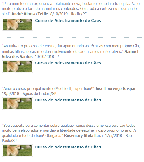 Curso de Adestramento de Cães do Cursos 24 Horas